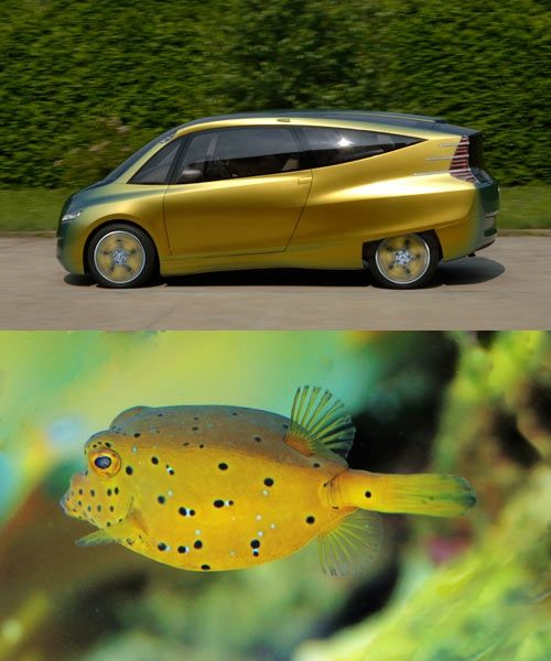 Biomimicry and Robomimicry for AI Self-Driving Cars: Machine Learning from Nature - 12 8Biomimicry 1 - Biomimicry and Robomimicry for AI Self-Driving Cars: Machine Learning from Nature