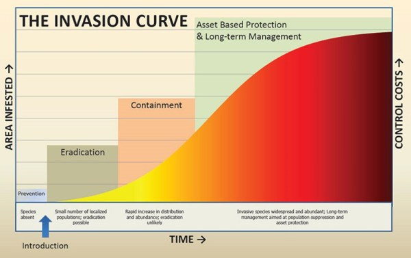 - 3 23Invasion Curve 1 - Invasive Curve and AI Self-Driving Cars